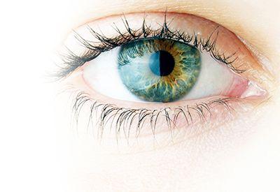 Salud visual. El ojo